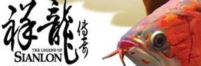 商洛水族批发市场 商洛水族馆 商洛龙鱼