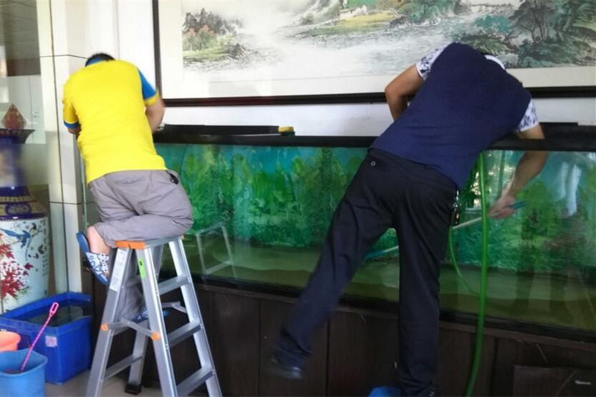 商洛上门鱼缸清洗维护服务